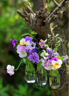 cottage container gardening..wouldn't this look sweet hanging on a porch or porch post ~ lovely <3