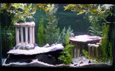 fish tank themes - Fish Tank Decorations Some Interesting Fish Tank Decoration Ideas Fish Tank Designs Ideas: Small Fish Tank Designs Ideas ? Small Fish Tanks, Tropical Fish Tanks, Tropical Aquarium, Betta Fish Tank, Aquarium Fish Tank, Goldfish Aquarium, Fish Tank Themes, Greek Fish, Fish Tank Design