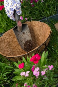 The Ultimate Guide to Hanging Baskets