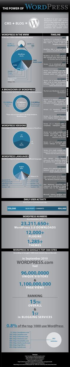 """The Power of WordPress"" from testking.com. This infographic gives a general overview and information about WordPress."