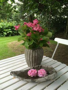 Stillebener og friske blomster.