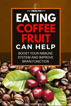 A cup of coffee in the morning can help improve mental clarity and sharpen your focus _ there_s a reason why so many people consume caffeine regularly as their drug of choice. But a long-neglected part of the coffee plant is now being increasingly recognized for its own health benefits _ the fruit.