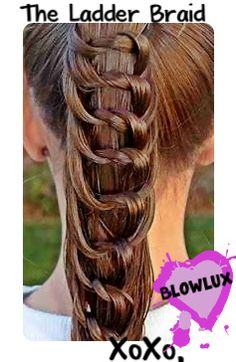 A twisted Ladder Braid