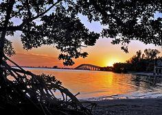 Sanibel Bridge 3   Flickr - Photo Sharing!