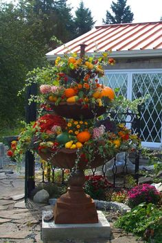 Floral/fruit arrangement in bird bath