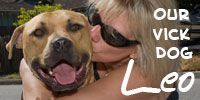 Interesting Dog Fact: One of Michael Vick's former fighting dogs, Leo, went on to be a therapy dog who comforted dying children. Rescue Dogs, Animal Rescue, Pitbull Lab Mix, Michael Vick, Adoption, Dog Facts, Types Of Dogs, Dog Fighting, Pit Bull Love