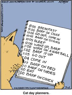 Cat Day Planner