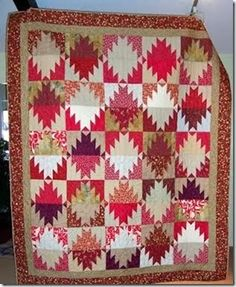 Anne's Mountains. The red and tan are nice. From Bonnie Hunter's Scrappy Mountain Majesties pattern.