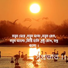 Best Bengali Good Morning Images Wishes , Wallpapers , Quotes & Pics Good Morning Nature, Free Good Morning Images, Good Morning Beautiful Quotes, Good Morning Cards, Good Morning Photos, Good Morning Flowers, Good Morning Messages, Morning Pictures, Good Morning Wishes
