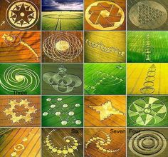 Loric Symbols inspired By Crop Signs