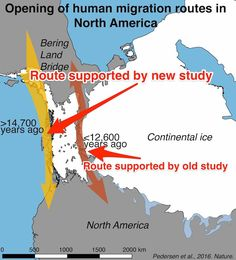 Archaeologists have uncovered genetic evidence that rewrites a fundamental aspect of American history skitched Native American Wisdom, Native American History, American Indians, Physical Properties, Historical Maps, Earth Science, World History, Ancient History, Genetics