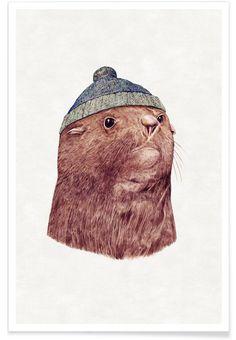 Fur Seal as Premium Poster by Animal Crew | JUNIQE