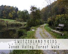 Easy walk for kids through lush forest, along lovely stream. Good option for spring and fall.  - Jonental, Zurich Region, Switzerland