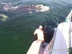 #Whale watching in #Hermanus, up close and personal