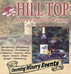 Hill Top Berry Farm and Winery has a fabulous blackberry festival, tasty meads just like the Vikings used to make, and an array of nice wines. Cranberry wine for Thanksgiving was my favorite!