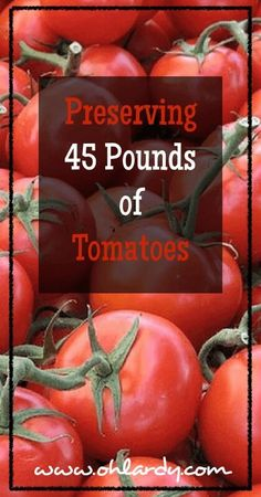 Preserving 45 Pounds of Tomatoes - www.ohlardy.com Preserving Tomatoes, Canning Tomatoes, Preserving Food, Canning Food Preservation, How To Can Tomatoes, Home Canning, App Form, Canning Recipes, Real Food Recipes