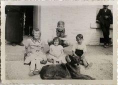 PHOTO ANCIENNE - VINTAGE SNAPSHOT - ANIMAL CHIEN GROUPE ENFANT DRÔLE MODE - DOG