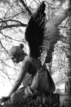 Angel... Uncredited. °