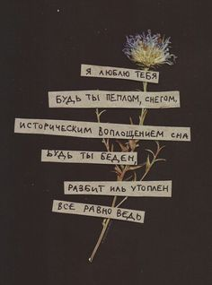 Russian Quotes, Quote Aesthetic, Some Quotes, My Mood, Some Words, In My Feelings, Journal Inspiration, Beautiful Words, Quotations