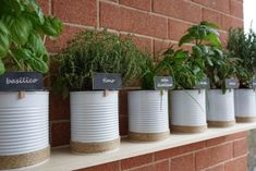 Upcycling tin cans to create your very own herb garden - The Handy Mano Herb Garden Pallet, Pallets Garden, Herb Planters, Herb Pots, Painted Tin Cans, Paint Cans, Tin Can Flowers, Small Herb Gardens, Balcony Herb Gardens