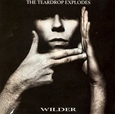 The Teardrop Explodes - 'Wilder'