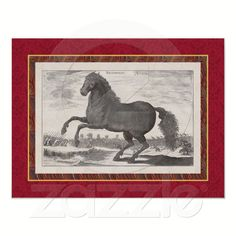 Bucephalus, One of the Most Famous Horses in History - Reproduction Poster