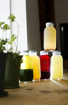The Top Juice Bars and Shops in Tampa Bay. Follow the photo link for more!