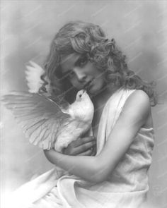 Victorian Girl Holds Dove Portrait 1900s 8x10 Reprint Of Old Photo