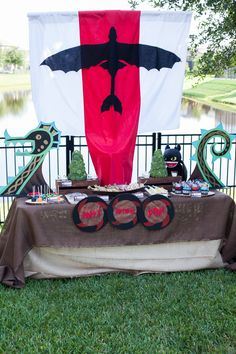 How to Train Your Dragon Birthday Party Ideas