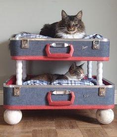 Vintage Suitcase Project
