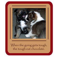 ♔  WHEN THE GOING GETS TOUGH, THE TOUGH EAT CHOCOLATE.  #CHOCOLATEISTHECURE