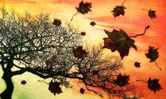 Choosing to accept the changing seasons