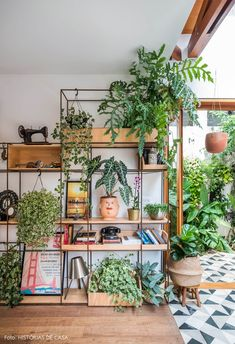 Things That You Need To Know When It Comes To Industrial Decorating You can use home interior design in your home. Even with the smallest amount of experience, you can beautify your home. Room With Plants, House Plants Decor, Plant Decor, Decoration Plante, Decoration Design, Feng Shui, Indoor Swing, Plant Shelves, Cheap Home Decor