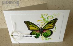 Ben even aan het oefenen met de Zig Clean Color Real Brush, en toevallig zag ik het thema van Less is More challenge 3 stamps. Just practising with the Zig Clean Color Real Brush, and what a coincident, the challenge at Less is More 272 is 3 stamps. Bee Cards, Butterfly Cards, Pretty Cards, Card Maker, Card Tags, Beautiful Butterflies, Tag Art, Creative Crafts, Greeting Cards Handmade