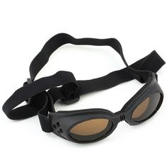Dog Goggles Sun Protection Glasses 4 Holes Design Black - http://www.thepuppy.org/dog-goggles-sun-protection-glasses-4-holes-design-black/