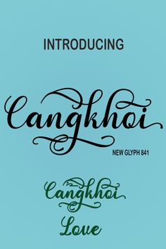 I Want to Introduce a New FontCangkhoi ScriptCangkhoi Script A new fresh & modern style with handmade calligraphy, decorative characters and dancing Photographer Portfolio, Glyphs, Typography Design, Canopy, Fonts, Designer Fonts, Type Fonts, Wedding Fonts, Typographic Design