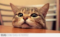 """Whatcha doing?"""