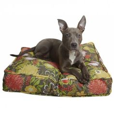 DIY dog bed. Wildflowers print dog bed cover stuffed with stuff from around the house.