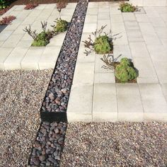 Gravel Design, Pictures, Remodel, Decor and Ideas - page 16