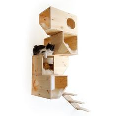 Cat Climbing Towers | Designer Cat Trees | Stylish Cat Furniture – STYLETAILS