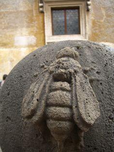 Ancient Bee.. Castel Sant'Angelo Rome Holiday photo Diana Watson.....