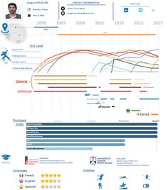 Ben jones infographic resume built in tableau public infographic grgory escallier resume 2017 tableau ccuart Gallery