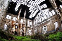 This abandoned factory is empty and overgrown. #Revolution