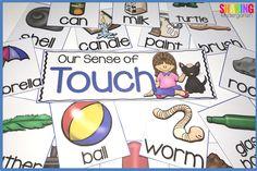 sense of touch sorti