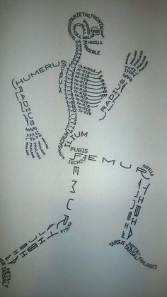 Cool way to show names of bones