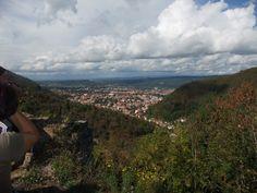 La montagne noire , vue sur Mazamet