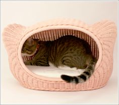 Kitty Head kitty bed - in pink or brown rattan