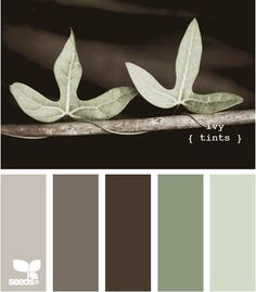 One of my favorite palette combos- great for an office, feels very 'nature inspired' but still sophisticated. Great with almost all wood tones