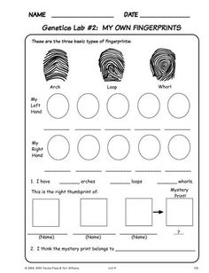 What is forensic science - was ist forensik? - qu'est-ce que la science médico-légale - ¿qué es la ciencia forense? - what is forensic science, forensic science classroom decor 4th Grade Science, Science Curriculum, Middle School Science, Elementary Science, Science Classroom, Science Fair, Science Lessons, Science Education, Teaching Science
