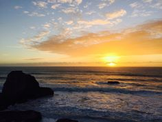Coast Diaries State Park CA [1280X960] [OC]
